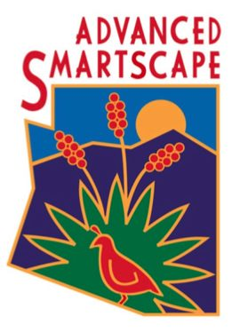 Advanced Smartscape