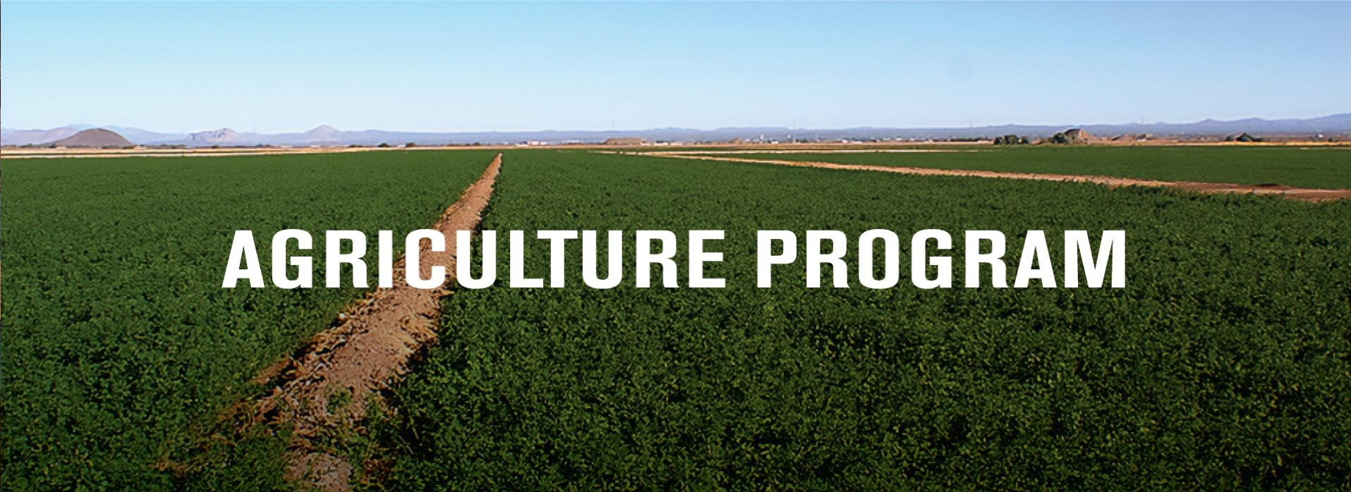 Agriculture Program banner image. The image is a farm field full or crops.