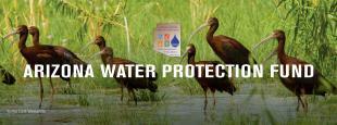 Arizona Water Protection Fund banner
