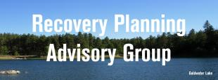 Recovery Planning Advisory Group