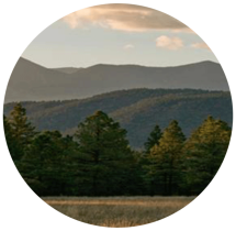 Rural Programs
